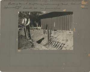 Thumbnail for the first (or only) page of Putting bench grafts in callousing bed.