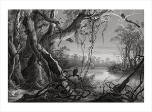 Thumbnail for the first (or only) page of Tableau 5: Mouth Of Fox River.
