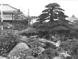 Thumbnail for the first (or only) page of View of a portion of the [fascinating] Japanese garden at the inn at which we stayed [in] Okitsu, Japan. Photograph #43250..