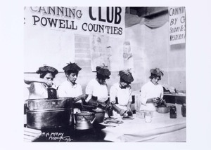Thumbnail for the first (or only) page of Canning Club Powell Counties (1915)..