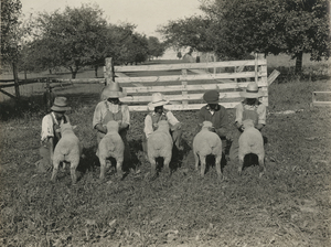 Thumbnail for the first (or only) page of U.S. Sheep Farm. Vienna, VA.