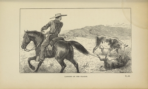 Thumbnail for the first (or only) page of Prairie Experiences in Handling Cattle and Sheep, p.40 Illustration.