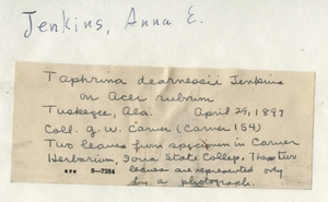Thumbnail for the first (or only) page of Handwriting sample: Anna E. Jenkins.