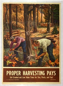 Thumbnail for the first (or only) page of Proper Harvesting Pays..