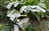 Pail with money overflowing onto the grass (Copyright IStock).
