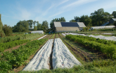 Sustainable farm energy (Photo credit: Cornell Small Farms Program).