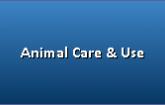 Animal Care & Use
