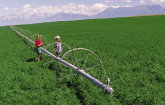 Field crop irrigation system (Photo credit NRCS)