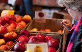 Apples sold at a winter farmers market in Somerville, Mass. Farmers markets are an important source of fresh local foods and can also be key to the economic success of farms and businesses within their communities