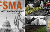 This ismage shwos the FDA Food safety Modernization Act logo.