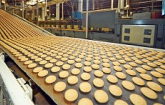 This is a photo of a food processing line.