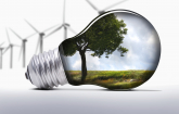 Light bulb with plants inside and windmills: Copyright iStock photos