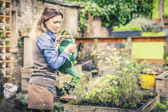 Woman watering plants at a community garden (Copyright IStock).