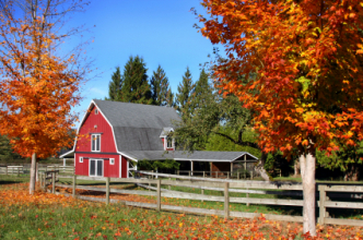 Red barn in Autumn.  (Copyright IStock)