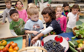 Children seeing, touching, and tasting produce