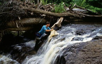 (USDA) Agricultural Research Service biologist testing the level of environmental harshness or pollution in a stream