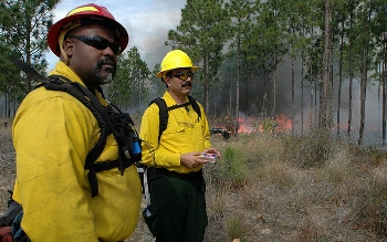 Fire Management Officer escorting a regional forester in northern Morocco