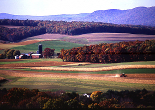 Farm scene in Klingerstown, PA with buildings, field crops, tractor (Copyright ARS)