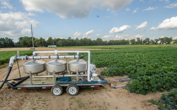 Kirby Farms third-generation family farm in Mechanicsville, VA, uses micro irrigation (drip watering) and plastic mulch (row covering) to efficiently grow green zucchini squash