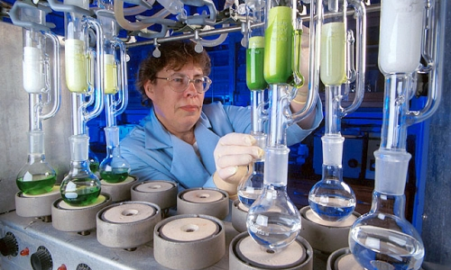 Chemist Joyce Foster extracts chemicals to determine which plants are safe, palatable, and nutritious for livestock.   Photo by Scott Bauer.